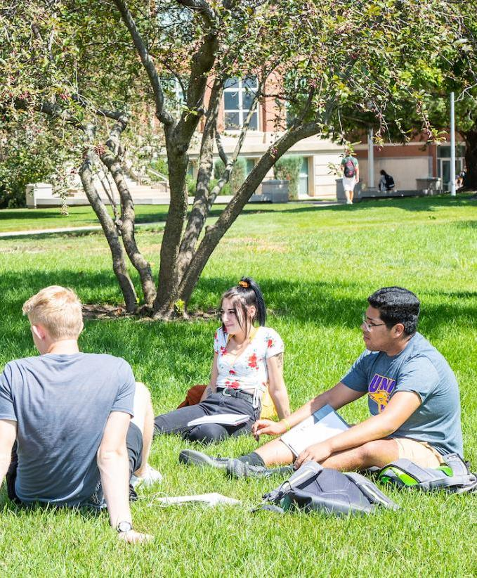 Students sitting in the grass chatting