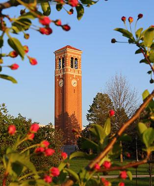 UNI campanile in sping