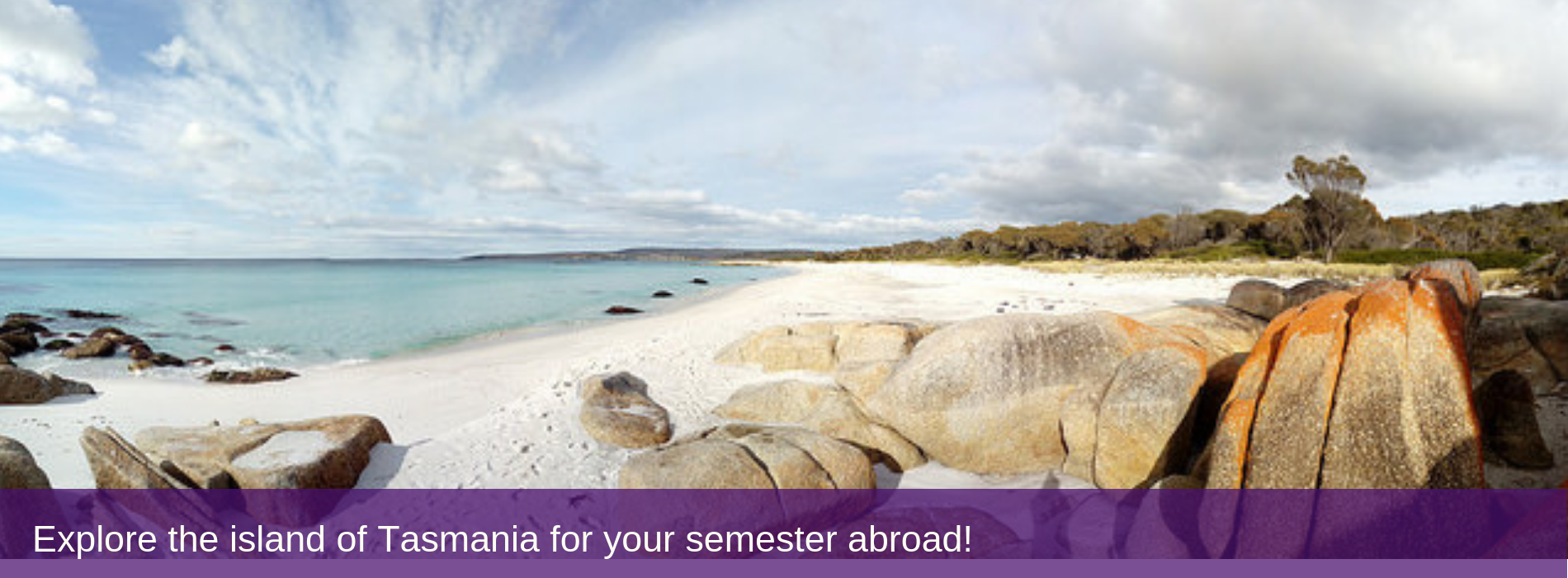 Explore the island of Tasmania for your semester abroad!
