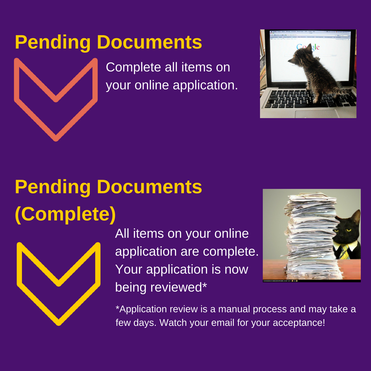 Stages of the online application